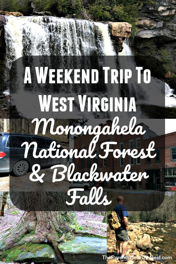 A weekend trip to West Virginia: Monongahela National Forest and Blackwater Falls State Park. #travel #weekendtraveler #minivancamping #travelusa #roadtrip