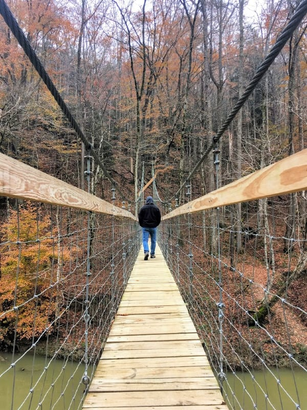 Sheltowee Trace Suspension bridge in Red Rive Gorge Area.