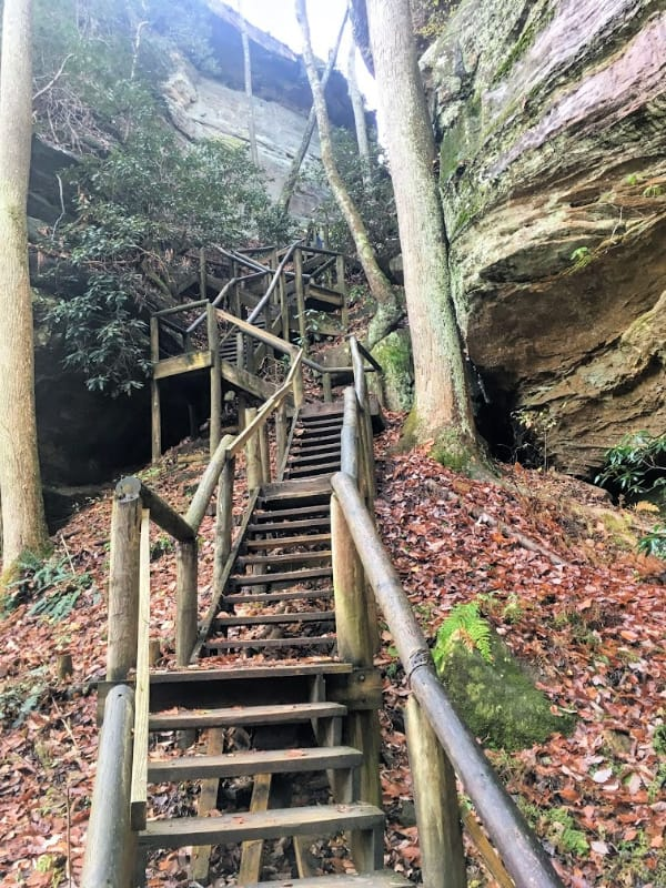 The stairs for Devil's Gulch Trail in Natural Bridge State Resort Park, KY.