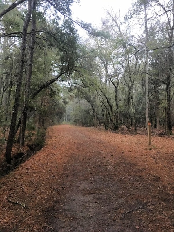 Places To Visit In Charleston, SC: John's Island County Park