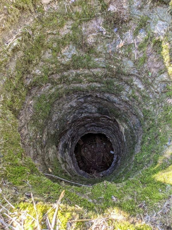 One of the two sink holes on the Hidden Springs Trail in Cedars of Lebanon State park where you can hear an underground spring rushing by.