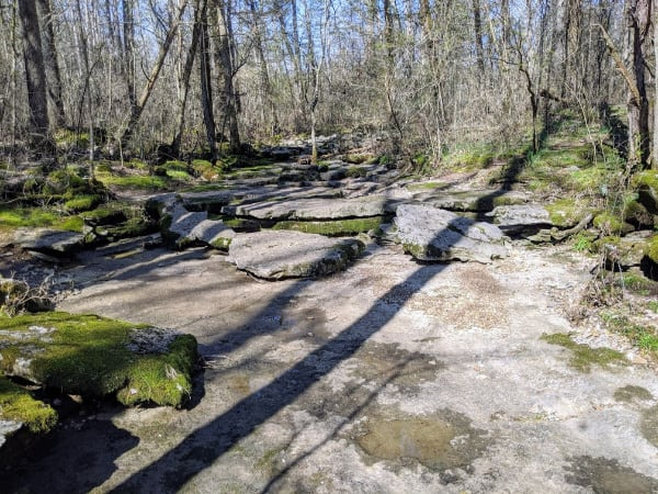 A dry creek bed on Hidden Springs Trail in Cedars Of Lebanon State Park, TN.