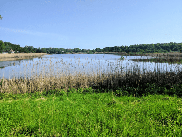 Striebel Pond in Michigan City, Indiana.