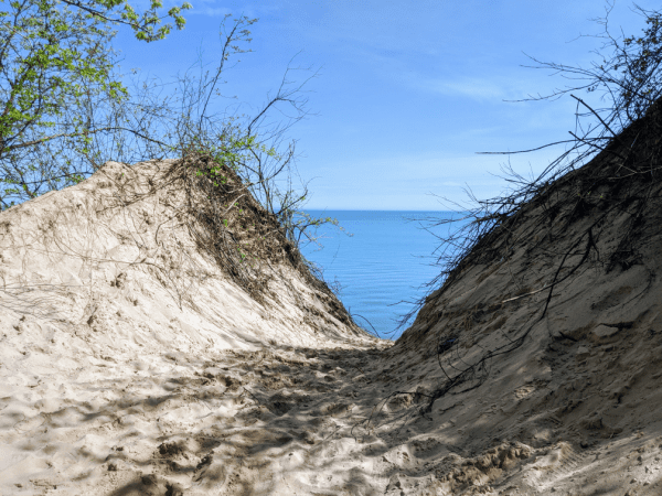The end of the trail to the beach at Mt. Baldy: Michigan City, Indiana