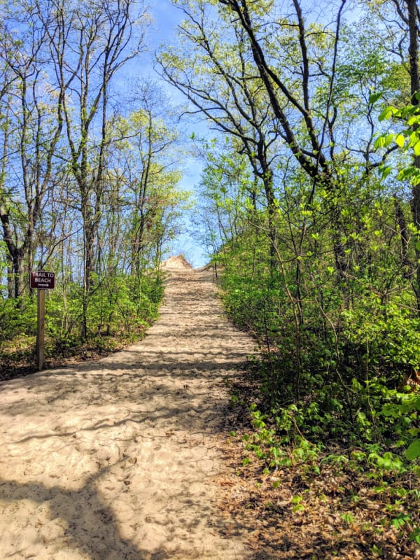 The trail to the beach at Mt. Baldy: Michigan City, Indiana