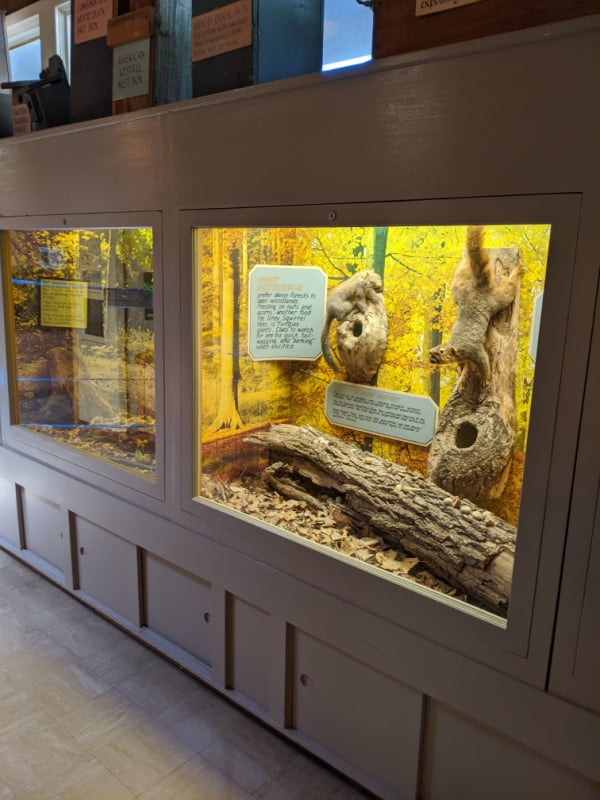 Displays in Brown County State Park nature center, Indiana.