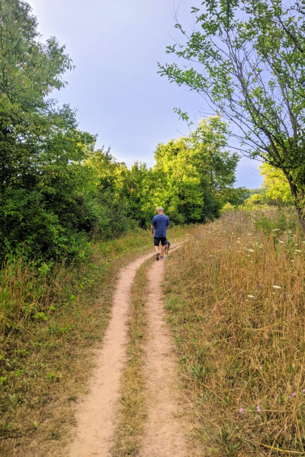 Hiking the blue trail in Fort Custer Recreation Area.