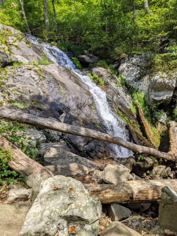 Blue Ridge Parkway Virginia Hikes: Following the cascade on the Fallingwater Cascades Trail