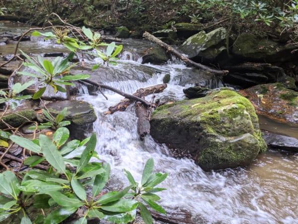Blue Ridge Parkway Virginia Hikes: Rushing water on the Rock Castle Gorge Loop Trail