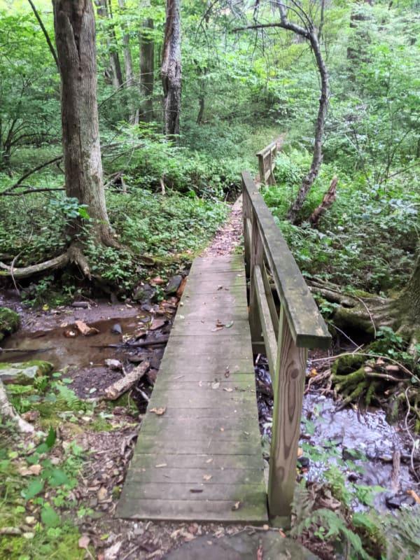 Blue Ridge Parkway Virginia Hikes: Bridge on the Rock Castle Gorge Loop Trail