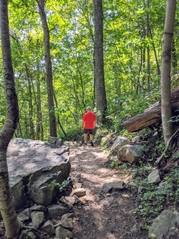 Blue Ridge Parkway Virginia Hikes: Heading down to the bottom of the Fallingwater Cascades Trail