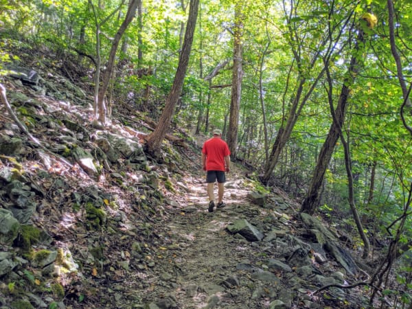 Blue Ridge Parkway Virginia Hikes: Heading back up to the top of the Fallingwater Cascades Trail