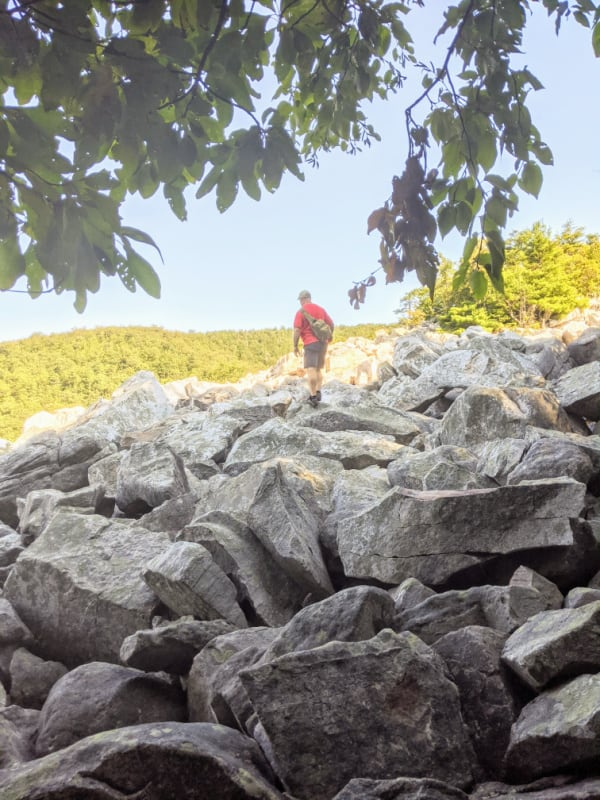 You are rewarded for your work as you get out of the trees of the Devil's Marbleyard trail and out onto the hill of boulders. This trail is a must do detour off the Blue Ridge Parkway.