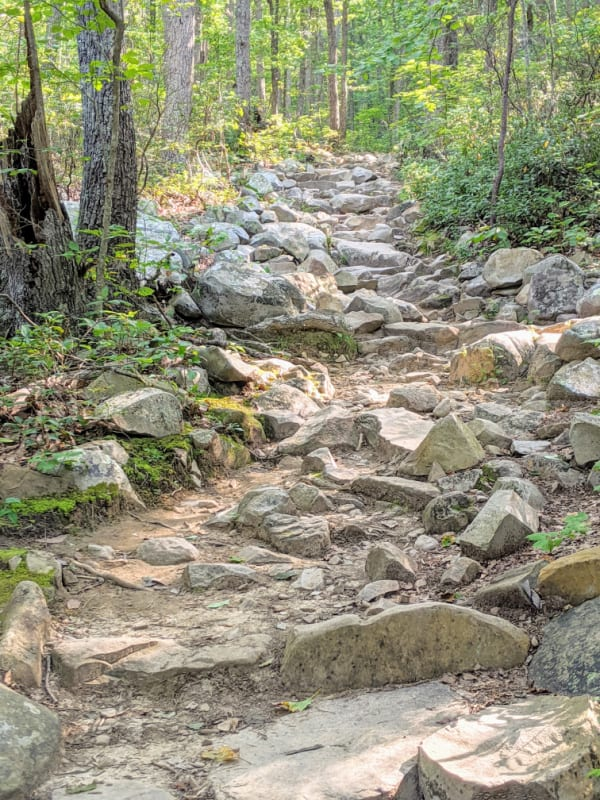 The slow and gradual uphill trail to Devil's Marbleyard turns into a steeper rockier trail very quickly. This hike is a great detour off the Blue Ridge Parkway in Virginia.
