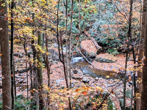 Views of Glade Creek from the Narrow Gauge Trail: Babcock State Park, WV.